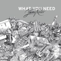 What You Need (LP)